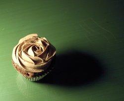 michelle-clevercupcakes.jpg